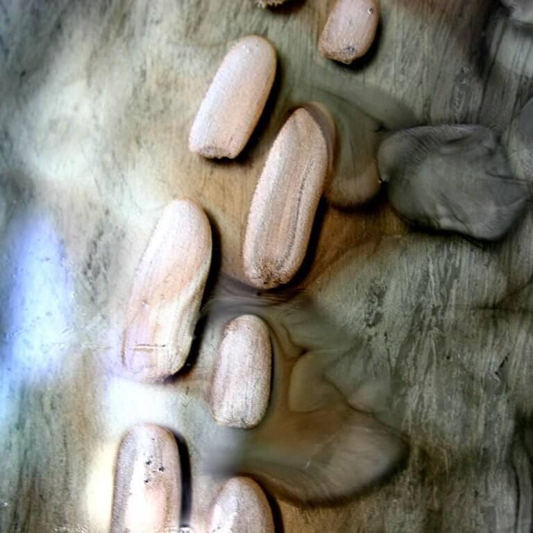 """Csupor Ágnes:""""A teljesség felé"""" – kiállításmegnyitó"""
